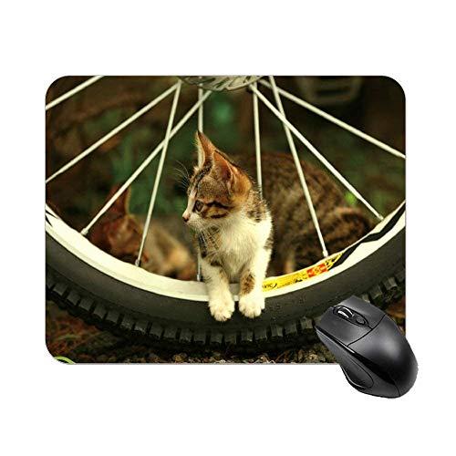Katze sitzen am Fahrrad Reifen Mauspad