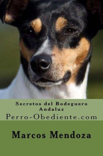 Ratonero Valenciano Select Gifts I Love My Dog Gold-Tone Cufflinks
