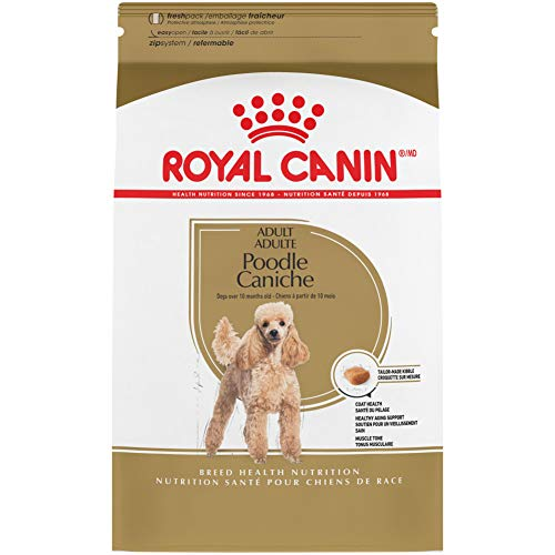 Royal Canin Poodle Adult Breed Specific Dry Dog Food, 10 pounds. bag