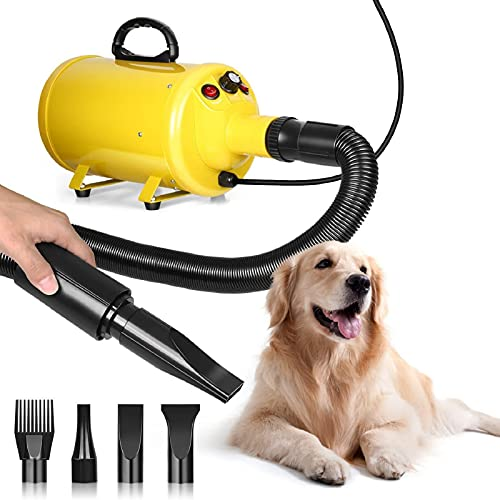Soffiatore per Cani 2800W, Asciugatore per Cani a Velocità Infinitamente Variabile e Calore Regolabile, Asciugacapelli Domestico/Professionale per Animali Domestici, 4 Ugelli Intercambiabili