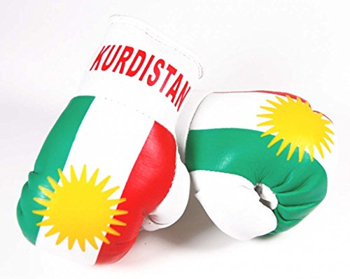 Doktor Hardstuff Mini Boxhandschuhe - Kurdistan