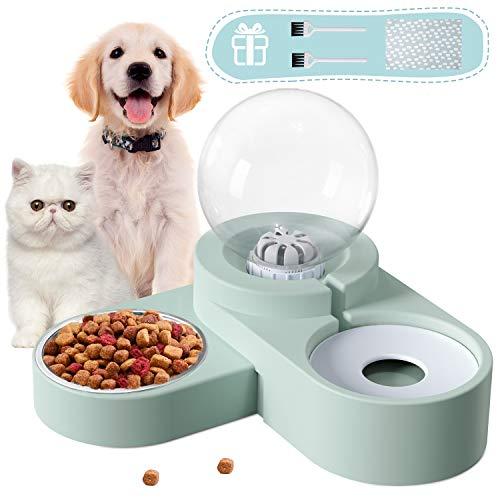 petit un compact Bol pour chat, bol pour chat Distributeur d'eau automatique pour animaux de compagnie…