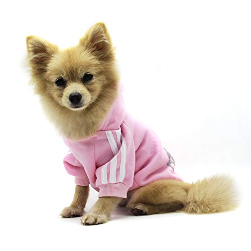 QiCheng&LYS Hundemantel Adidog Hund Hoodies Kleidung, Pet Puppy Katze Niedlicher Baumwoll Warm Hoodies Coat Pullover (M, rose)