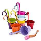 zedela vasi per Piante, 10 Vasi pensili da Giardino, fioriera da Esterno con Foro di drenaggio e Gancio Rimovibile, in Metallo, di 10 Colori Diversi