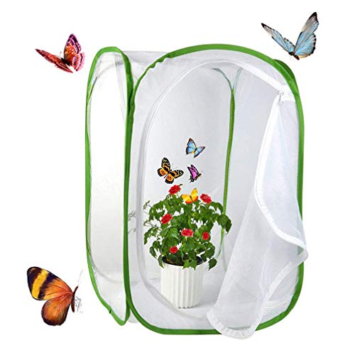 Yeelan Schmetterling Lebensraum zusammenklappbare Bug Catcher Net Mesh Insekten Pflanze Käfig Terrarium Pop-up für Kinder/Nett/Kleinkind fangen Grillen/Leuchtkäfer etc (40 * 40 * 60cm)