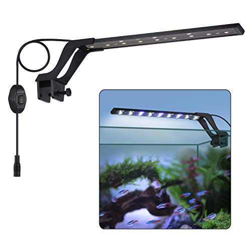 Kwokwei - Lámpara LED para acuario, lámpara con luz blanca y azul, 8 W, con enchufe europeo, 21 ledes para acuario, cisternas