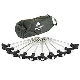 CampFeuer – 10 x Piquets en T résistants (20 cm), dans un étui, pêche à la carpe, camping