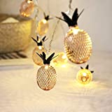 Meccion LED-Lichterkette mit 20 LEDs, Ananas, 3 m, goldfarben