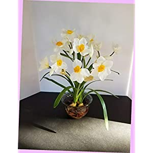 Artificial Artificial Silk Flower Floral Arrangement Yellow and White Narcissus Flowers Bouquet Realistic Flower Arrangements Craft Art Decor Plant for Party Home Wedding Decoration