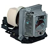 GOLDENRIVER EC.J8000.001 Replacement Lamp with Housing Compatible with ACER Projectors S1200