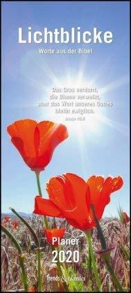 Lichtblicke - Notizkalender 2020 - DuMont-Verlag - Wandkalender mit Zitaten aus der Bibel - Wandplaner mit 3 Spalten zum Eintragen - 22 cm x 49 cm - Küchenkalender