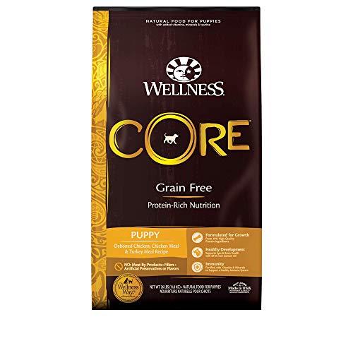 Wellness CORE Natural Grain Free Dry Dog...
