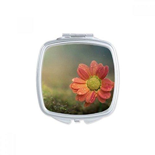 DIYthinker Beaux pétales de Fleurs carré Rose Maquillage Compact Miroir de Poche Portable Mignon Petit Miroirs Main Cadeau Multicolor