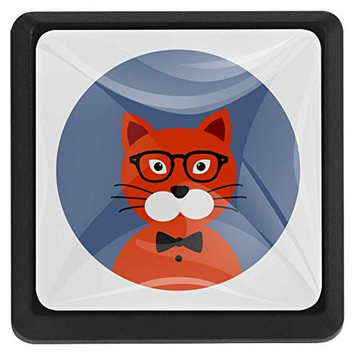 Vierkante ladeknoppen, 3 pakketten 37mm Trekhendels met Hipster Fox, Gebruikt voor Slaapkamer Dressoir Deur Kast Keuken Modern design 37x25x17mm/1.45x0.98x0.66in Hipster Cat