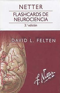 Netter. Flashcards de neurociencia - 3ª edición