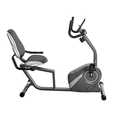 Sunny Health & Fitness Recumbent Bike - SF-RB4876