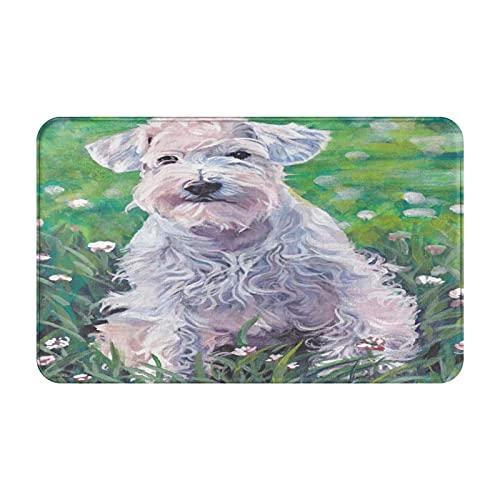Antideslizante Suave Alfombra de Baño,Schnauzer Art Miniatura Pintura Perro Blanco,Micro Personalizado Decoración del Hogar Baño Alfombra de Piso,80 x 49 CM