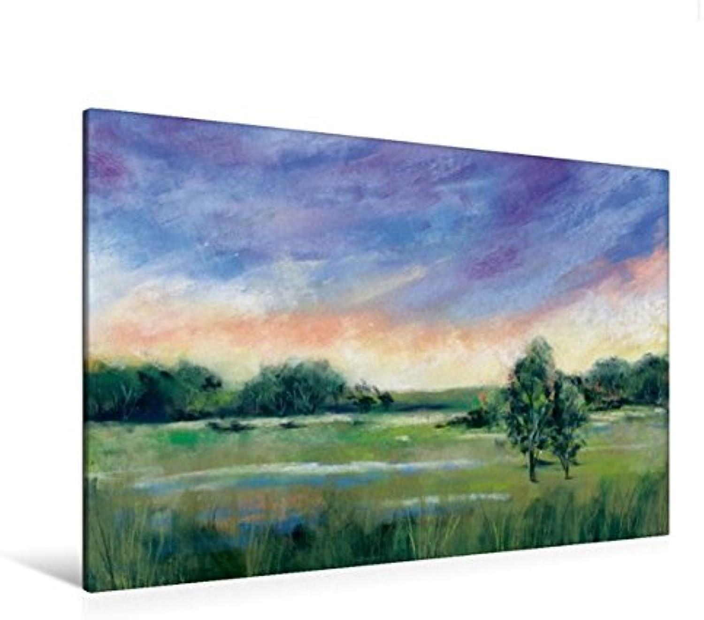 Calvendo Premium Textil-Leinwand 120 cm x 80 cm quer, Wiesenlandschaft   Wandbild, Bild auf Keilrahmen, Fertigbild auf echter Leinwand, Leinwanddruck Natur Natur