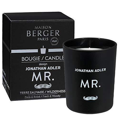 PARFUM BERGER Terre Sauvage Bougie parfumée Noir 180 g