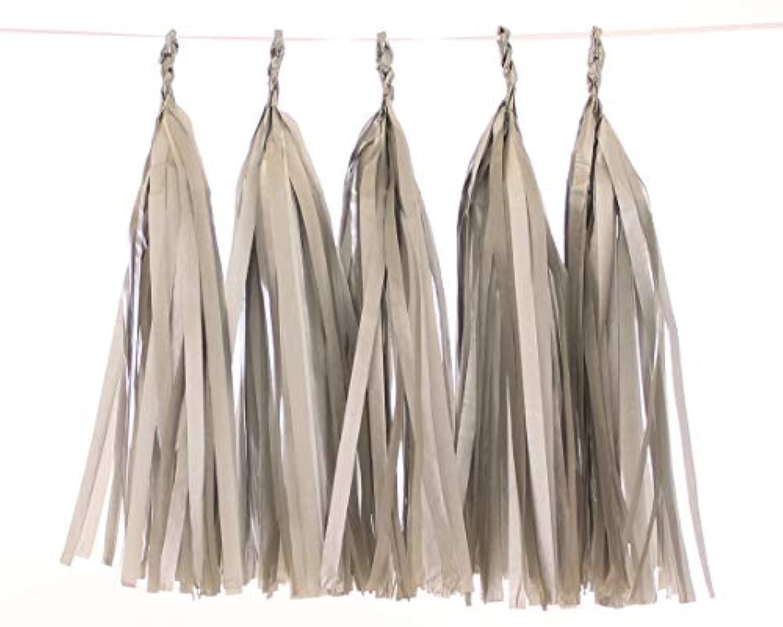 5 Piece Tissue Paper Tassel Garland DIY Kit (silver)