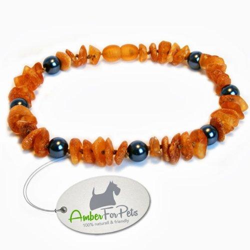 AmberForPets Bernstein Halsband für Hunde und Katzen Bernsteinkette Zeckenhalsband Zeckenschutz 26cm