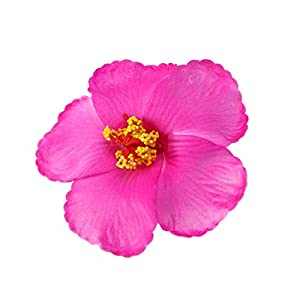 Toyvian Artificial Flowers Heads Hibiscus Hawaiian Flowers for Craft DIY Art Project Scrapbooking Tabletop Decoration Tropical Luau Party Favors Supplies Rose Red
