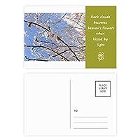 桜の枝の写真 詩のポストカードセットサンクスカード郵送側20個