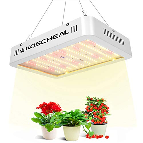 KOSCHEAL 600W LED Plant Grow Light, Sunlike Full Spectrum, 176PCS LEDs, Warm White Lights with 1PCS UV&IR, Daisy Chain Function Available, for Indoor Plants Germination, Seedling, Flowering&Fruiting