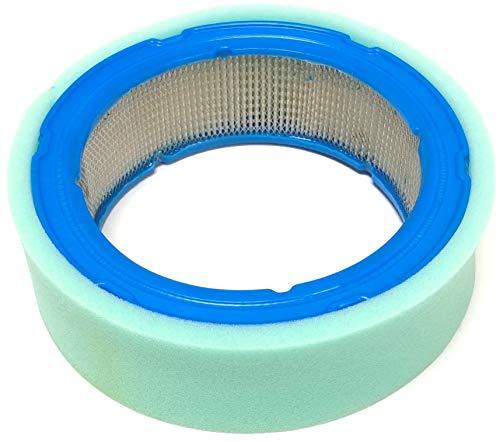 Ersatz-Luftfilter für Briggs & Stratton 394018s, 394018, 392642; inklusive 272490S Vorfilter