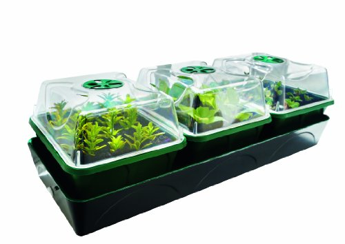 Bio Green Hollandia kweekstation met capillaire mat en watertank 1,4 l, L: 54 cm, B: 17 cm, H: 21 cm - 12,5 W