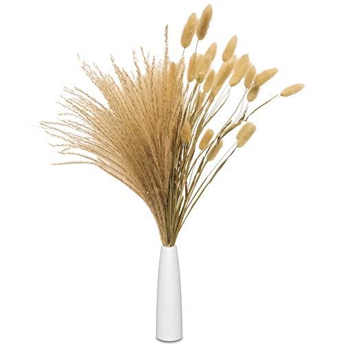 QUWOTXE Pampasgras Getrocknet Deko mit Vase, getrocknetes Schilfgras, Kaninchenschwanz, Trockenblumenstrauß, 45cm 25 Pcs Natürlich Pampas +5 Lagurus Ovatus +Weiße Keramikvase