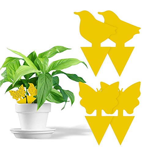 MAILIER 60 Pcs Plug-in Fly Trap,Yellow Sticky Traps Fly Traps Bug Traps,Sticky Traps Animal Pattern,Yellow Plates Yellow Sticker Protection Plant from the Mosquito Aphids Leaf Flies Vermin
