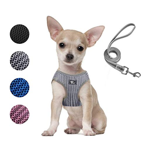 Dog and Cat Universal Harness with Leash - Adjustable Reflective Step in Dog Harness for Small Dogs