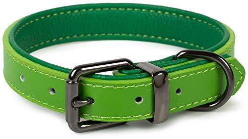 Puccybell Hundehalsband 2 farbig mit Leder, klassisches Halsband in Kontrastfarben für kleine, mittelgroße und große Hunde HB004 (M, Grün)