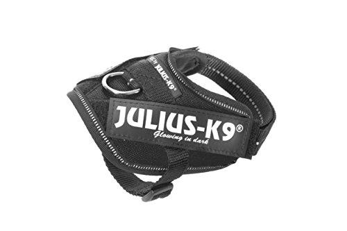 Julius K-9 IDC Power Baby