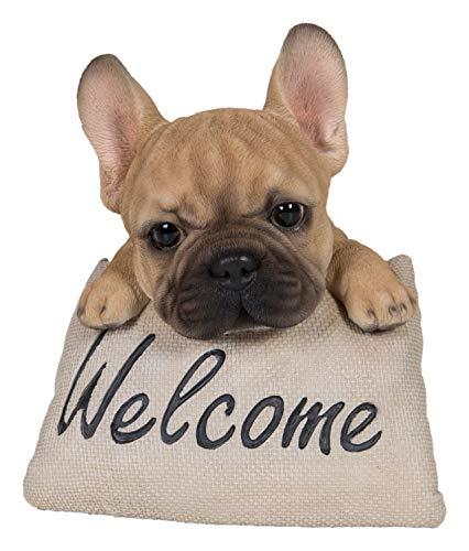 """Vivid Arts – Französische Bulldogge """"Welcome"""", Dekoration für Haus oder Garten (PW-FRBD-F)"""