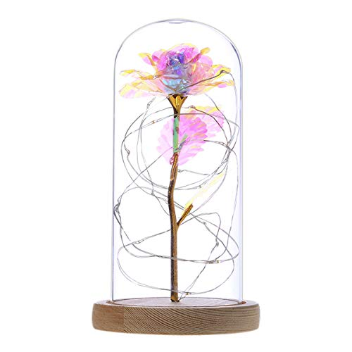 Petyoung Bunte Goldfolienrose Und LED-Licht in Glaskuppel auf Holzbasis mit LED-Lichterkette für Wohnkultur Urlaubsparty Hochzeitstag