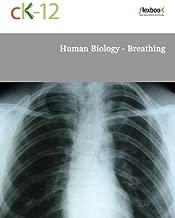 Human Biology - Breathing