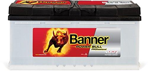 Preisvergleich Produktbild Banner Power Bull Professional 12V 100Ah P10040
