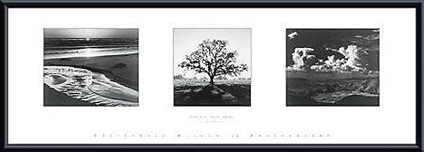 ansel adams trilogy print