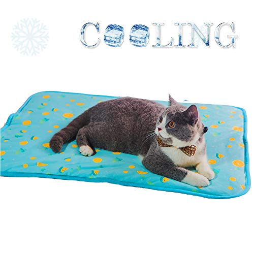 SEIS Dog Ice Pad Ice Silk Cats Kennel Mat Pet Cooling Pad Summer Cool Bamboo Mat Breathable Pad (Blue Fruit, S
