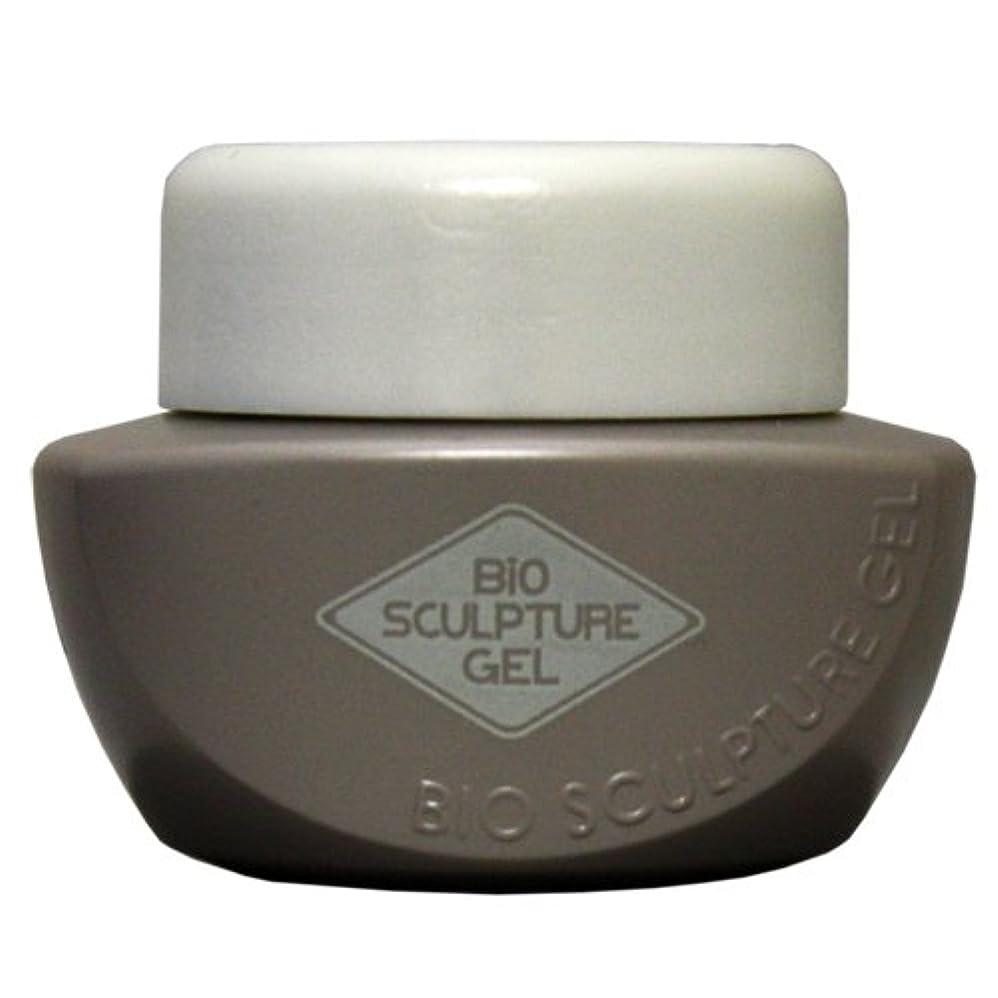 今まで支援ラップトップBio Sculpture Gel (バイオジェル)クリアジェル 25g