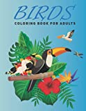 Birds Coloring Book For Adults: 30 awesome bird coloring books for adults. This birds coloring book for adults will enjoy.