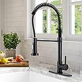 FILTA Kitchen Faucets, Matte Black Kitchen Sink Faucets...