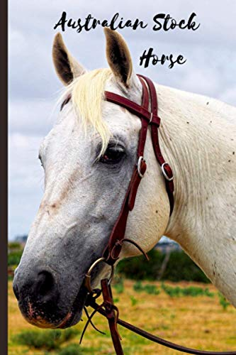 Australian Stock Horse: Journal and Notebook - Composition Size (6'x9') With 120 Lined Pages, Perfect for Journal, Doodling, Sketching and Notes