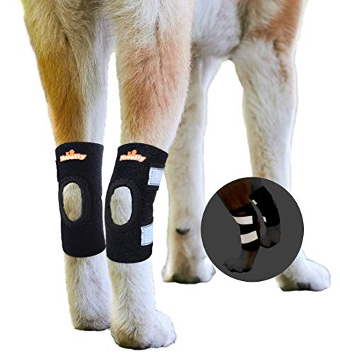 NeoAlly Cat & Small Dog Ankle Brace Rear Leg Brace [Short Version] with Safety Reflective Straps for Hind Leg Wounds Heal and Injuries and Sprains from Arthritis Extra Small (Pair)