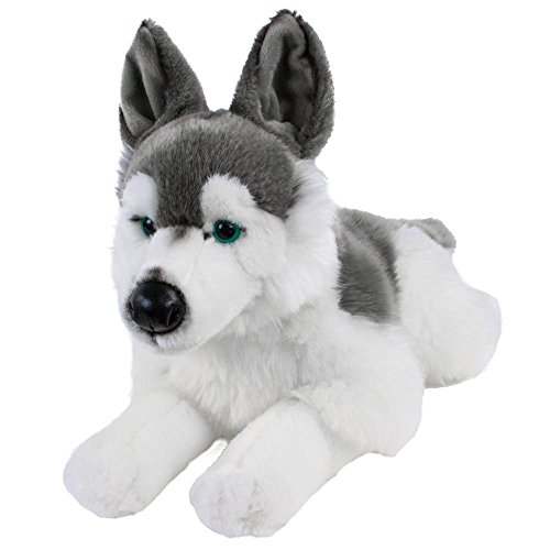Teddys Rothenburg Kuscheltier Husky Skalli liegend grau/weiß 44 cm Plüschhusky Schlittenhund