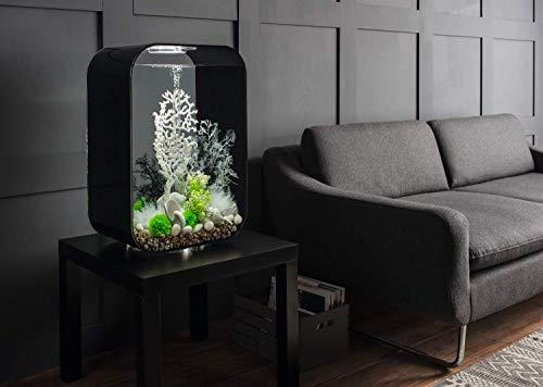 Biorb : Aquarium Biorb Life 60l : Transparent Mcr