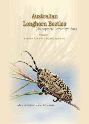 Slipinski, A: Australian Longhorn Beetles: (Coleoptera: Cerambycidae)