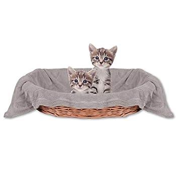 Bestlivings Couverture douillette pour animal de compagnie et chat